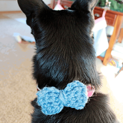 Easy Yarn Crochet Bow Ties