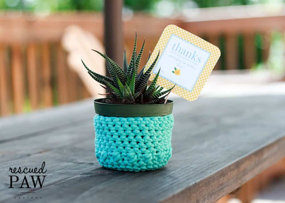 Crochet Plant Holder - Free Crochet Pattern by Rescued Paw Designs - Makes a Great DIY gift!