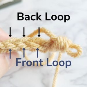 back loop and front loop of as titch